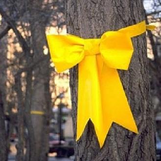 cinta amarilla atada al viejo roble